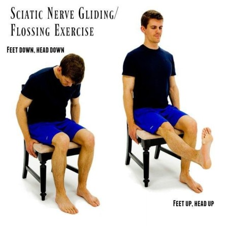 Sciatic Nerve Gliding Exercise